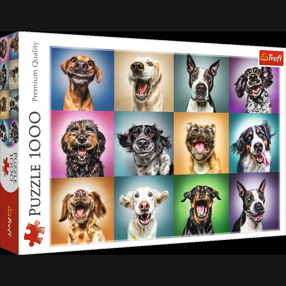 Puzzle - Zabawne psie portrety - 1000 el. Multi-Colored - 1