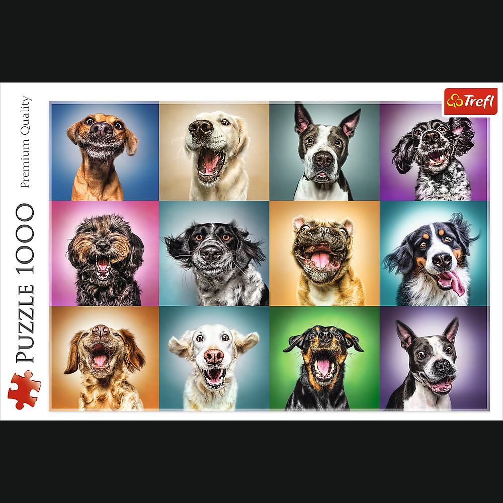 Puzzle - Zabawne psie portrety - 1000 el. Multi-Colored - 2