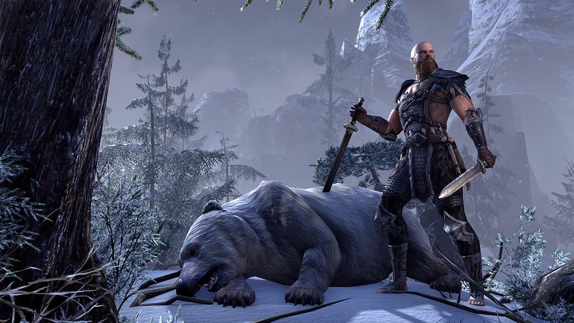 The Elder Scrolls Online (PC) - TESO Key - GLOBAL - 4