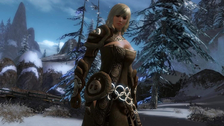 Guild Wars 2 NCSoft Key GLOBAL - 4