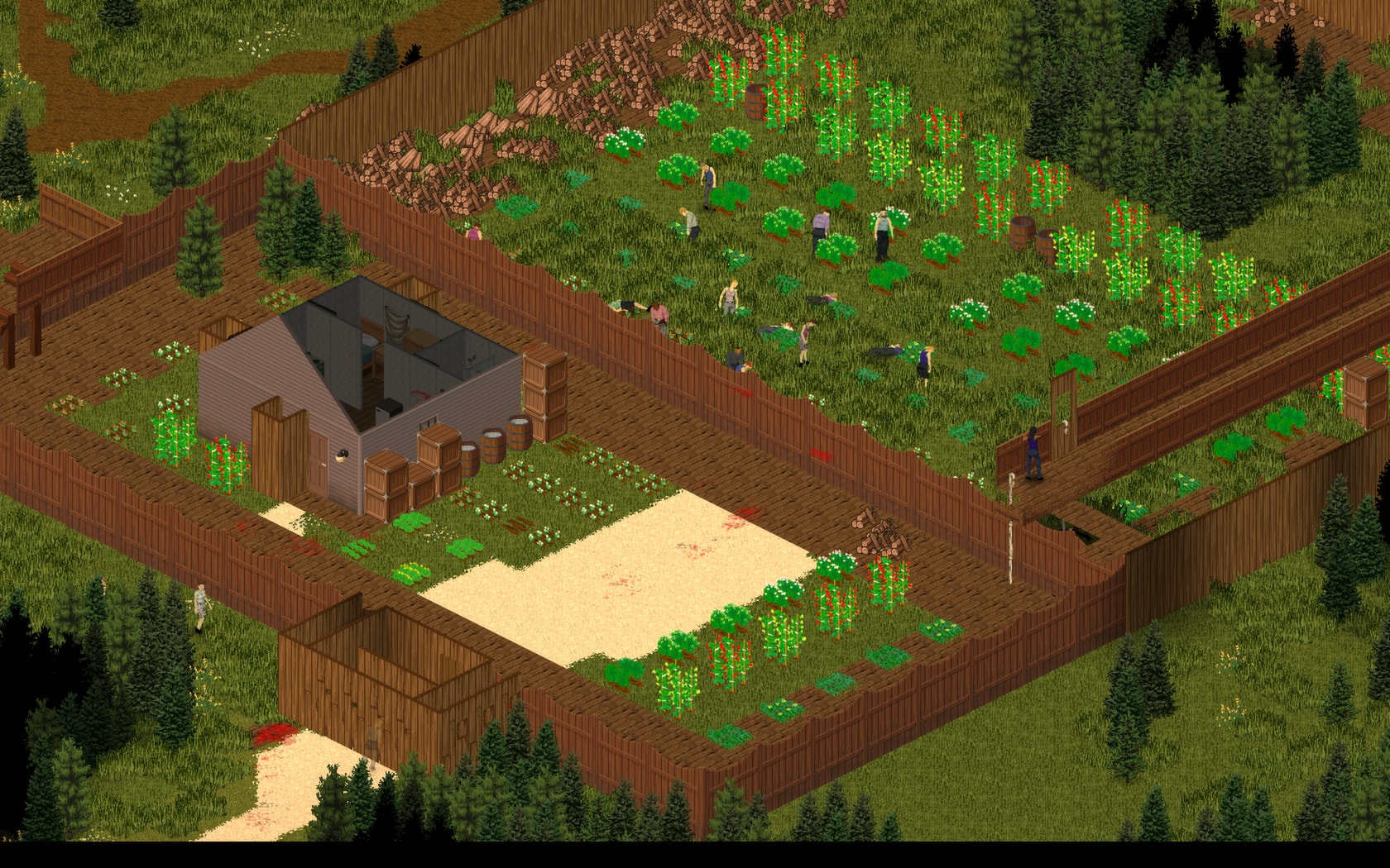 Project Zomboid Steam Gift GLOBAL - 4