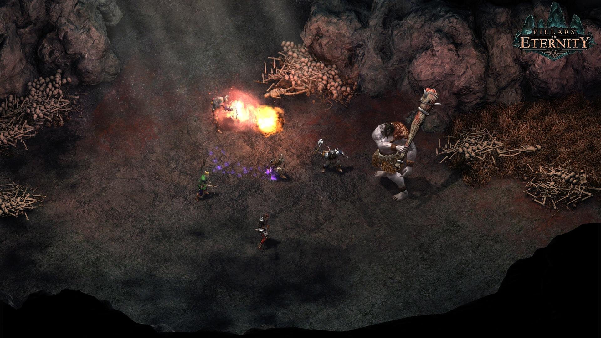 Pillars of Eternity - Hero Edition Steam Key GLOBAL - 4