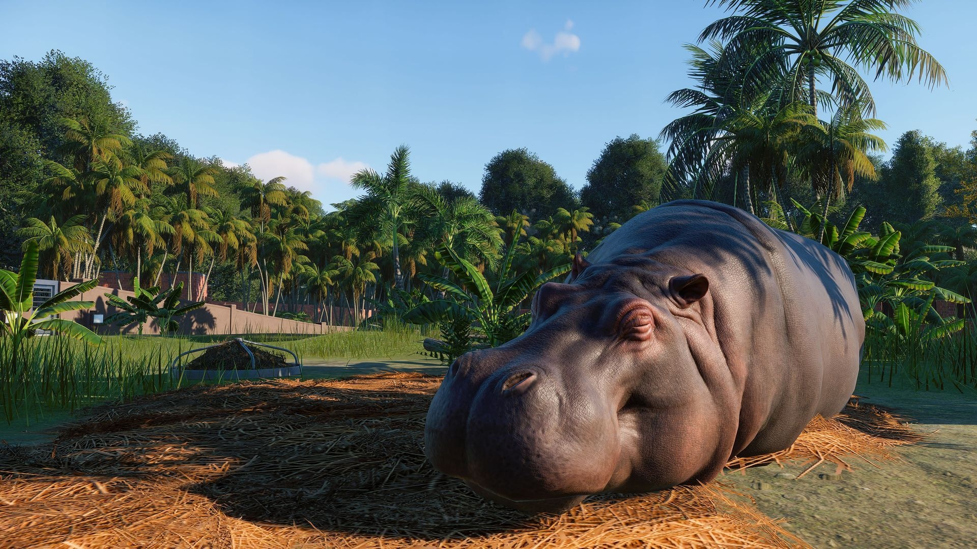 Planet Zoo Deluxe Edition Steam Key GLOBAL - 3