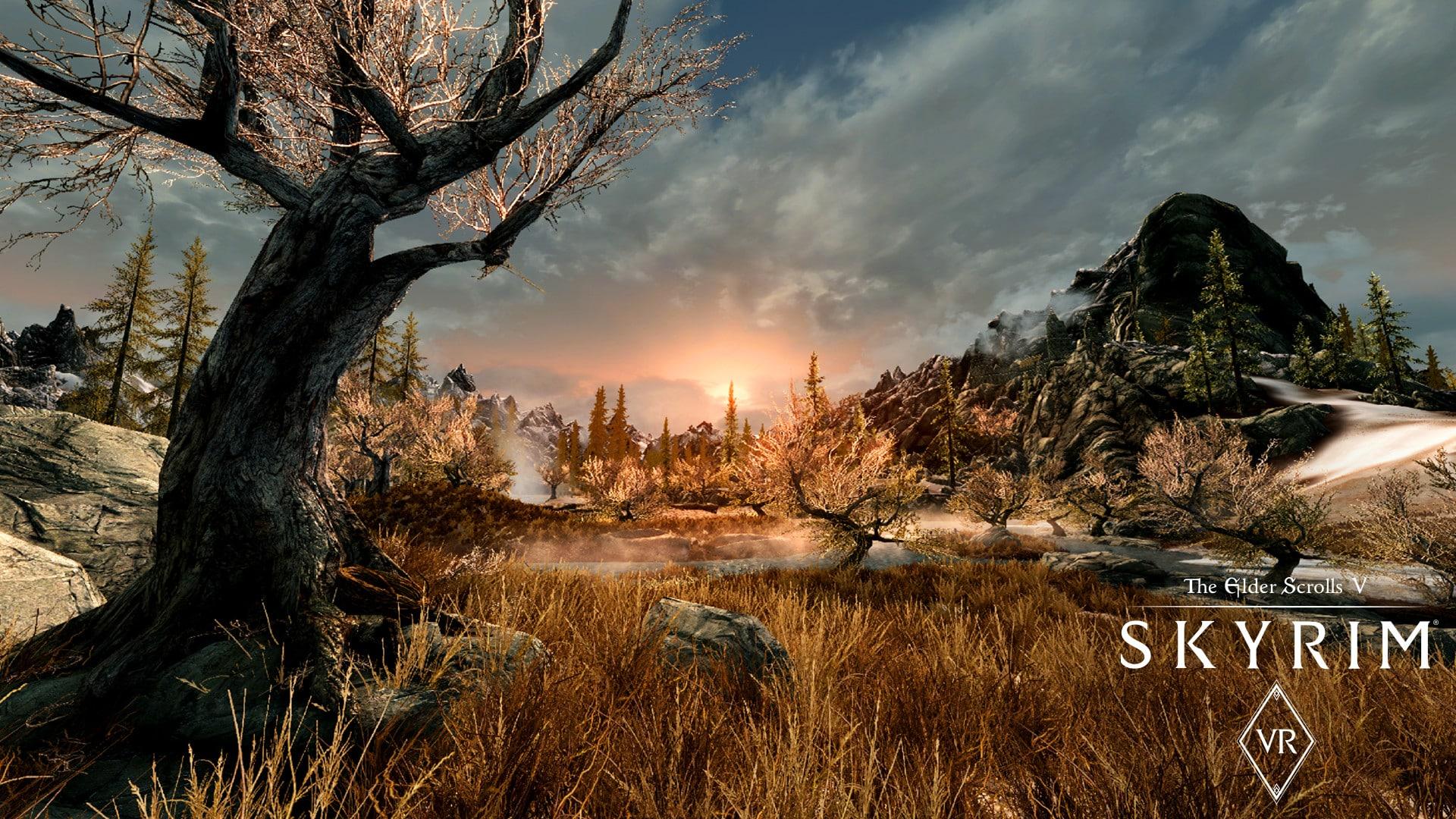 The Elder Scrolls V: Skyrim VR Steam Key GLOBAL - 2
