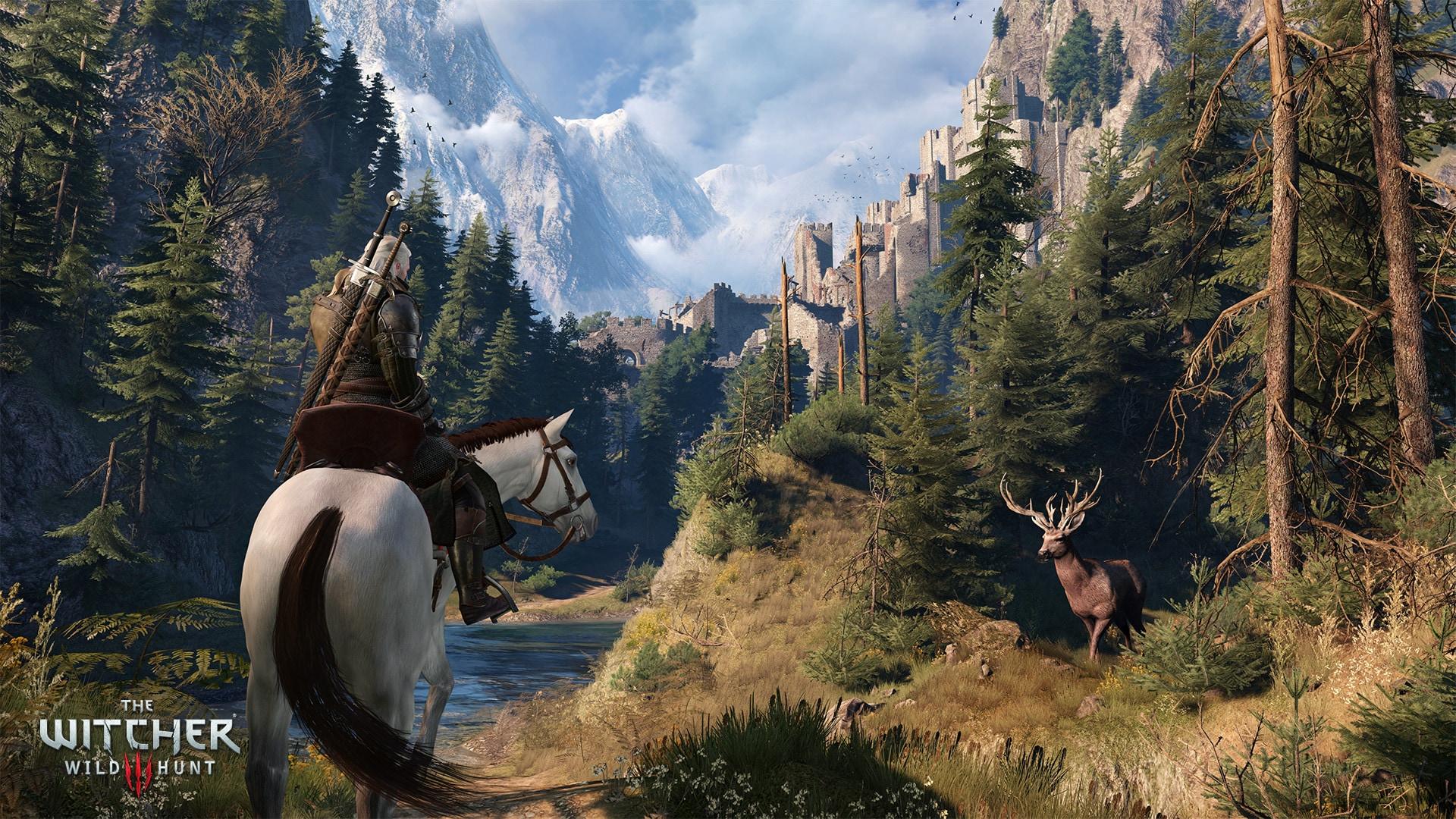The Witcher 3: Wild Hunt GOG.COM Key RU/CIS - 4