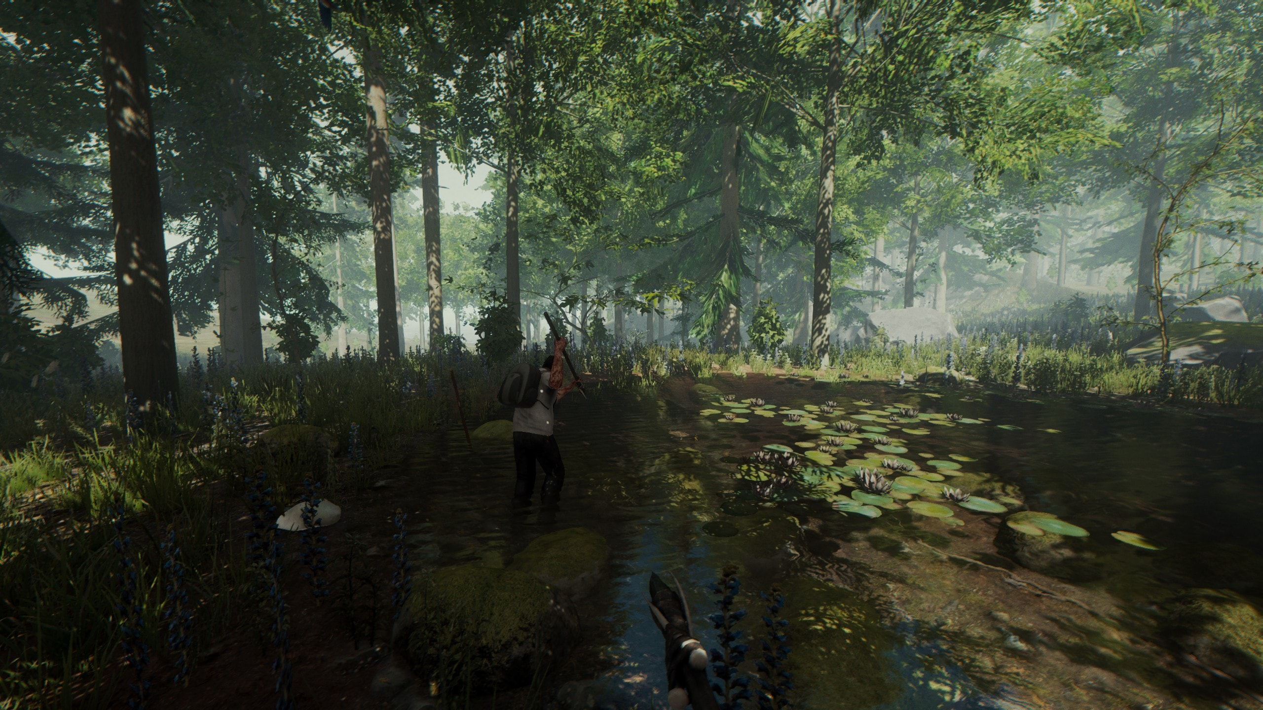 The Forest (PC) - Steam Key - GLOBAL - 4