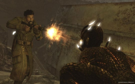 Fallout: New Vegas Ultimate Edition Steam Key CZECH REPUBLIC - 2