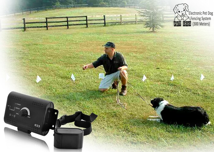 Electronic Pet Dog Fencing System (300 Meters) - 7