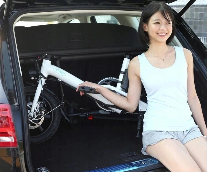 FIIDO D3 Folding Electric Bike 250W 7.8Ah 14 inches - White - 5