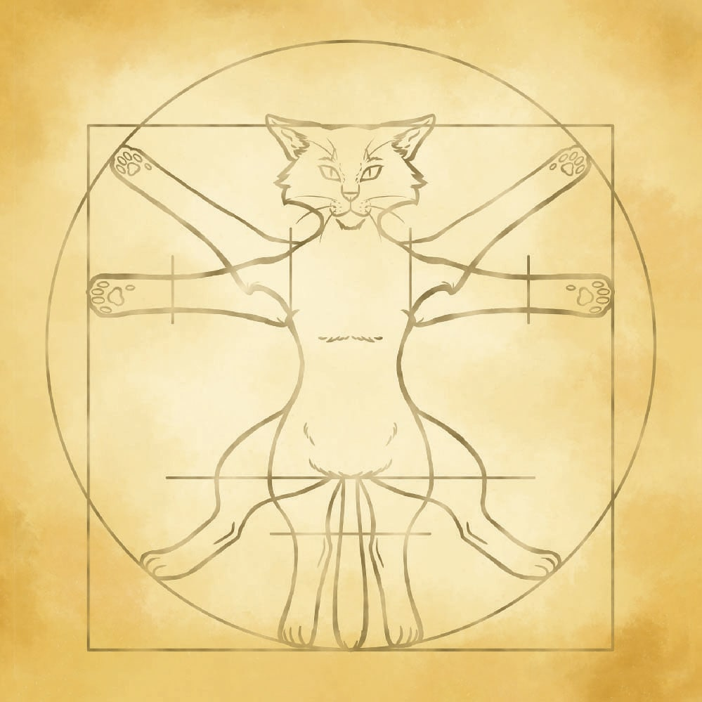 Dice Tray For RPG Games - Vitruvian Cat - 2
