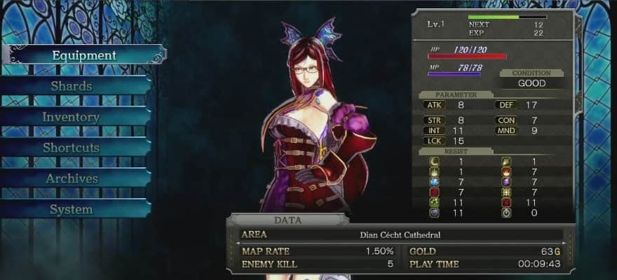 Character menu interface in the game